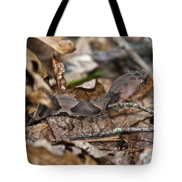 Copperhead 4 Tote Bag by Douglas Barnett