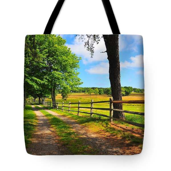 Country Road Tote Bag by Catherine Reusch  Daley