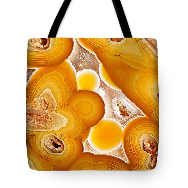 Coyamito  Tote Bag by Bill Morgenstern