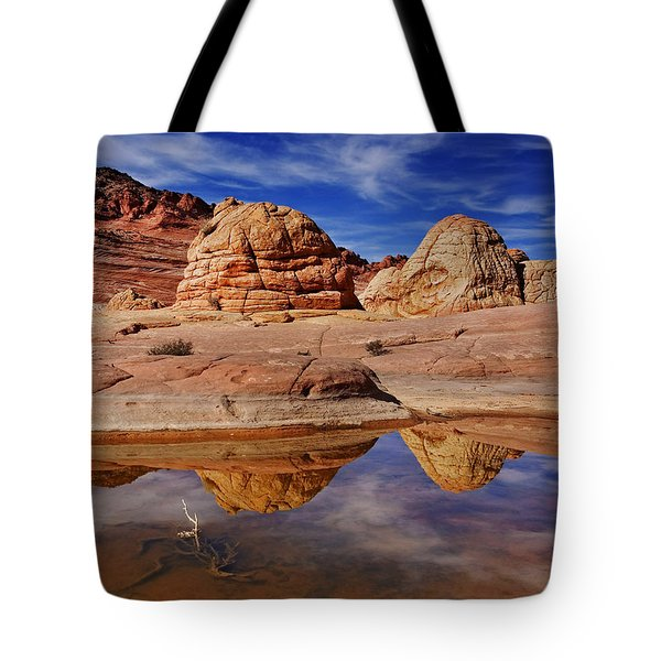 Coyote Butte Reflections Tote Bag by Mike  Dawson