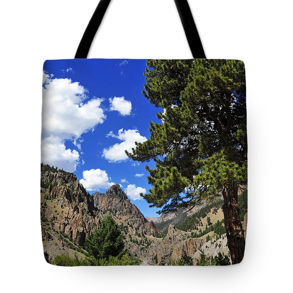 Creede Tote Bag by Skip Hunt