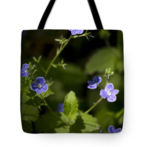 Creeping Speedwell Tote Bag by Christina Rollo