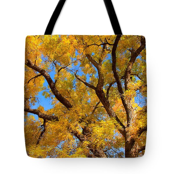 Crisp Autumn Day Tote Bag by James BO  Insogna