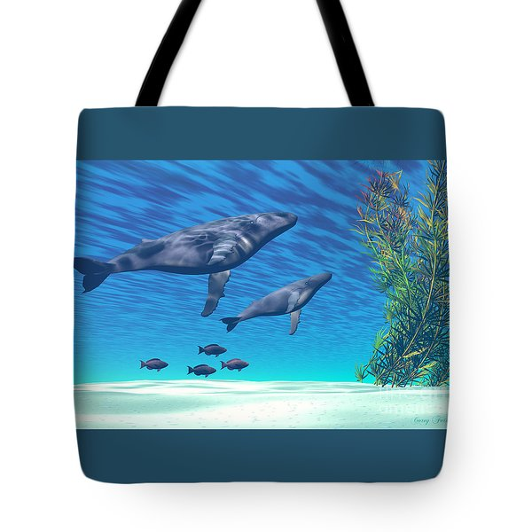 Crystal Clear Tote Bag by Corey Ford