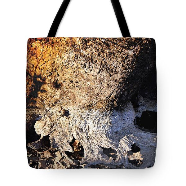 Curves And Colors In Nature Tote Bag by Todd A Blanchard