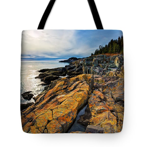 Cutler Coast Lichen Tote Bag by Bill Caldwell -        ABeautifulSky Photography