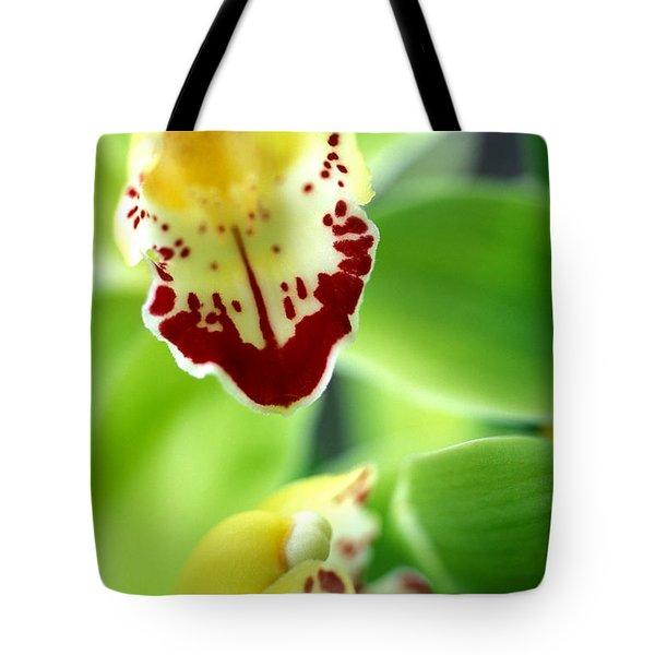 Cymbidium Seafoam Emerald Orchid Tote Bag by Kathy Yates