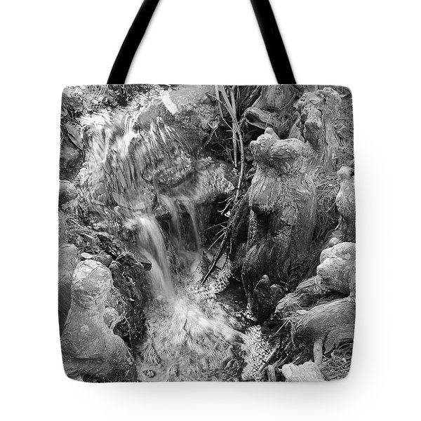 Cypress Knees II Tote Bag by Suzanne Gaff