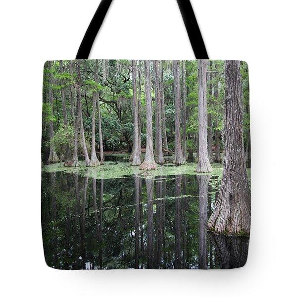 Cypress Swamp Tote Bag by Carol Groenen