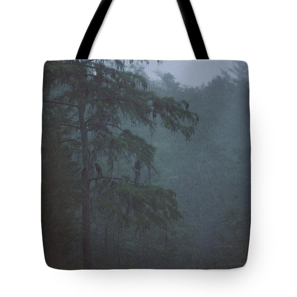 Cypress Swamp Tote Bag by Kimberly Mohlenhoff
