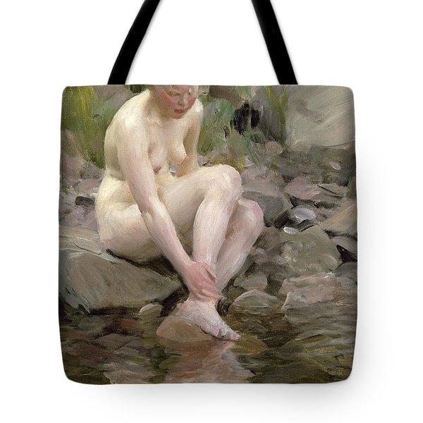 Dagmar Tote Bag by Anders Leonard Zorn