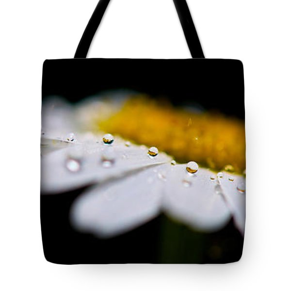 Daisy Water Drops Triptych Tote Bag by Lisa Knechtel