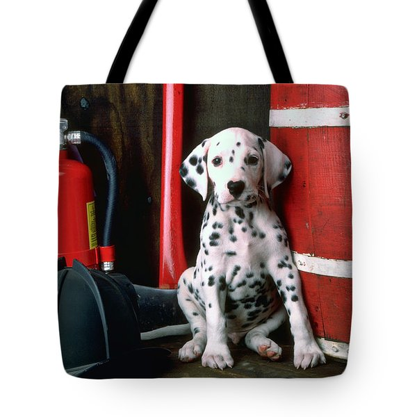 Dalmatian puppy with fireman's helmet  Tote Bag by Garry Gay