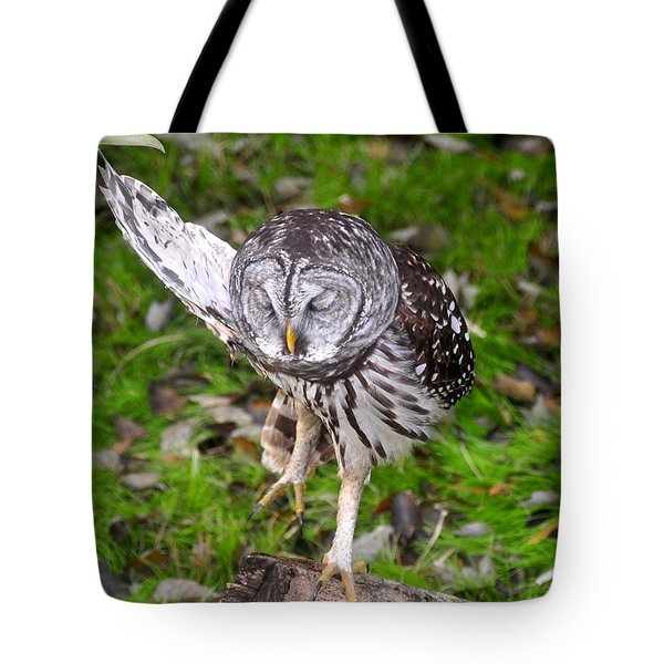 Dancing Owl Tote Bag by David Lee Thompson