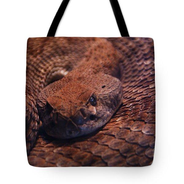 Dangerously Handsome Tote Bag by Linda Shafer