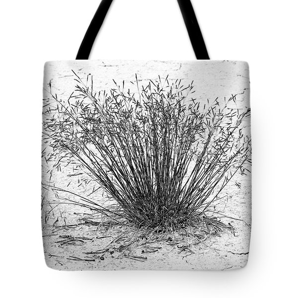 Death Valley National Park - Hot - Dry - Beautiful Tote Bag by Christine Till