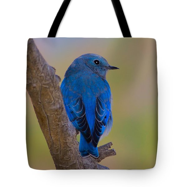 Deep Blue Tote Bag by Shane Bechler