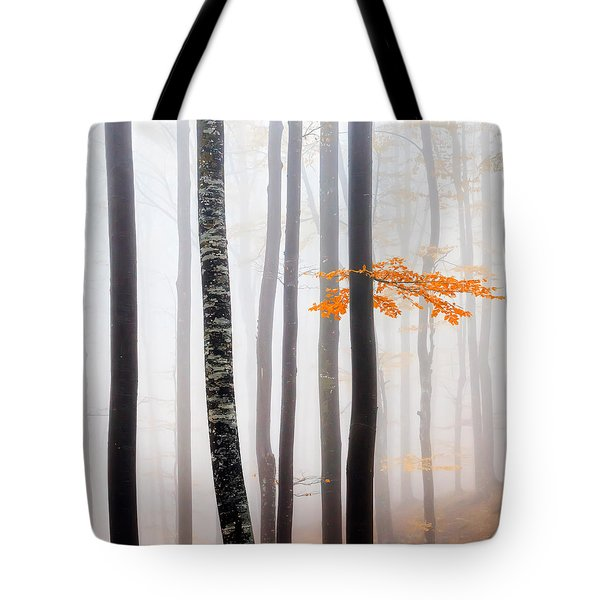 Delicate Forest Tote Bag by Evgeni Dinev