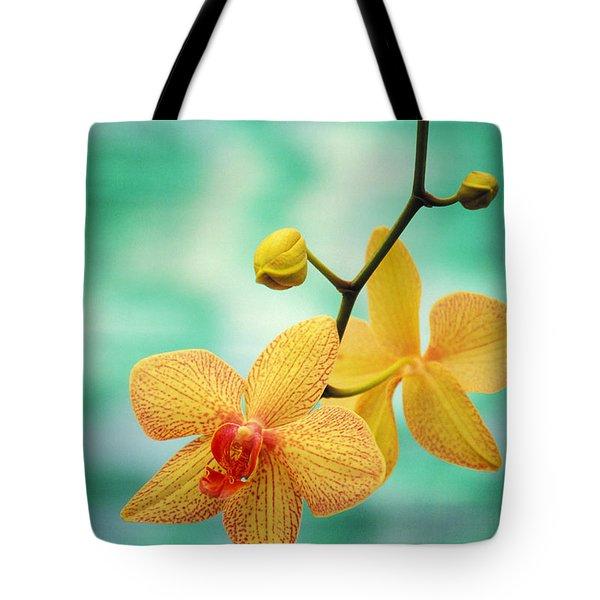 Dendrobium Tote Bag by Allan Seiden - Printscapes