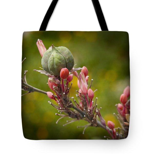 Desert Seed Pod 2 Tote Bag by Kelley King