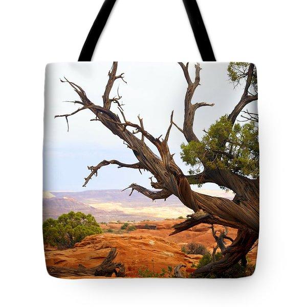 Devils Garden 2 Tote Bag by Marty Koch
