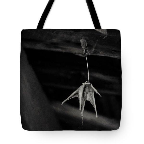 Dim Secrets Tote Bag by Rebecca Sherman