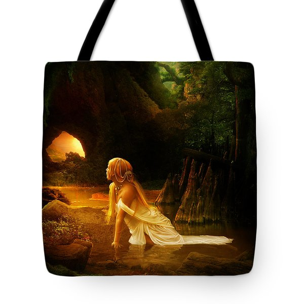 Distant Horizon Tote Bag by Mary Hood