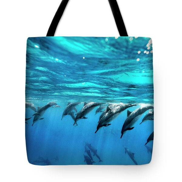 Dolphin Dive Tote Bag by Sean Davey