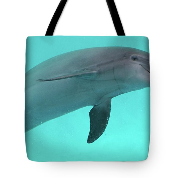 Dolphin Tote Bag by Sandy Keeton