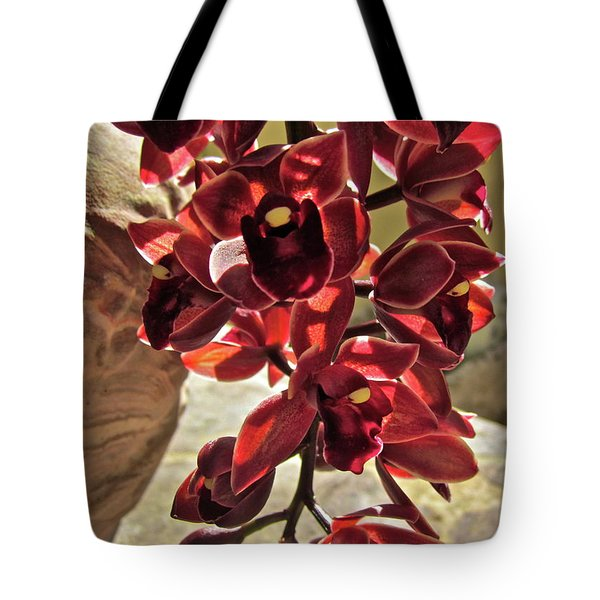 Donatelli Tote Bag by Gwyn Newcombe