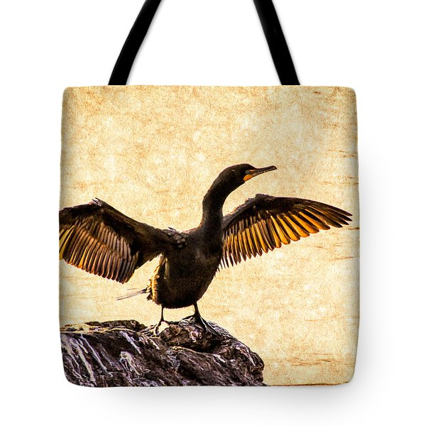 Double-crested Cormorant Tote Bag by Bob Orsillo