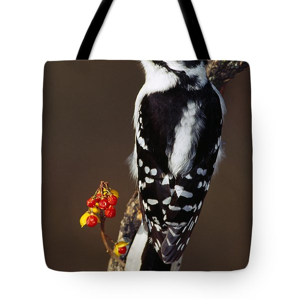 Downy Woodpecker On Tree Branch Tote Bag by Panoramic Images
