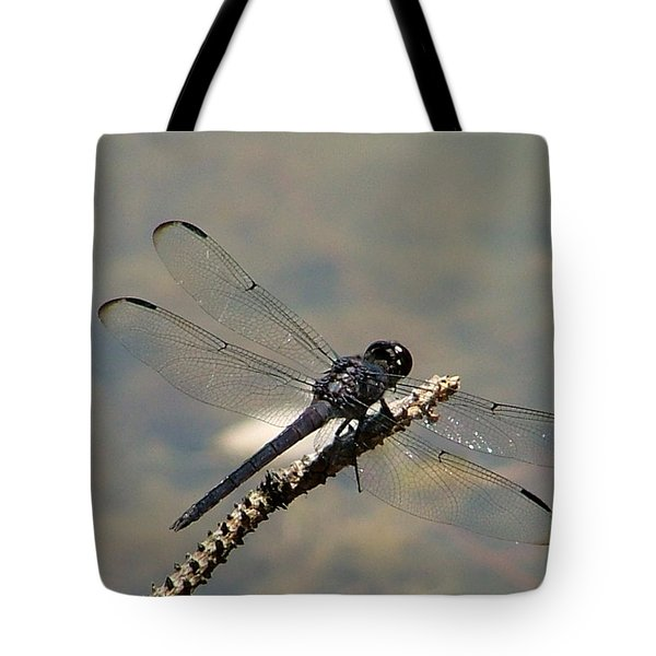 Dragonfly Black Tote Bag by Lisa Stanley