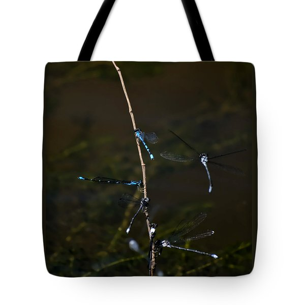 Dragonfly Hotel Tote Bag by Warren M Gray