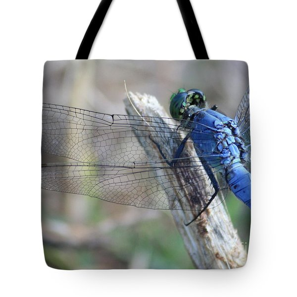 Dragonfly Wing Detail Tote Bag by Carol Groenen