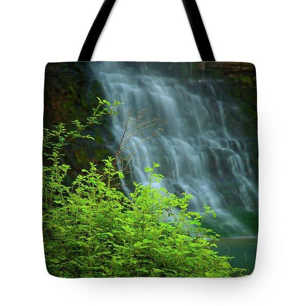 Dreamy Waterfalls Tote Bag by Iris Greenwell