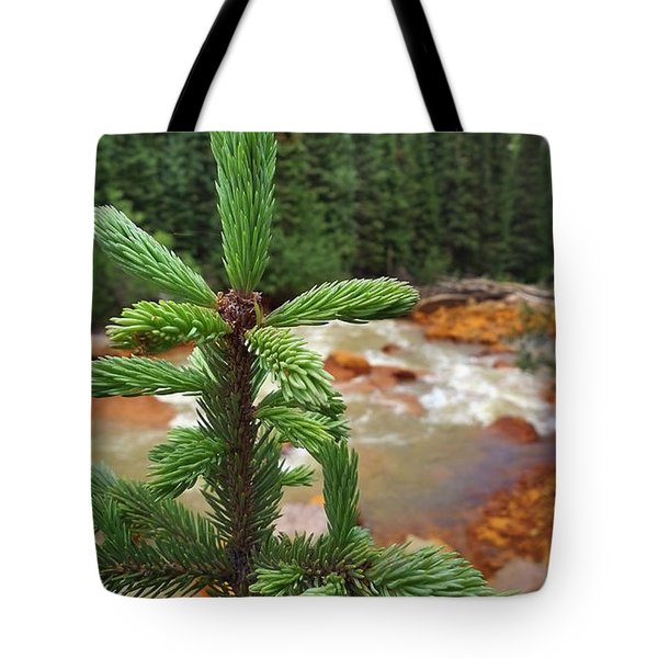 Durango Pass Tote Bag by Skip Hunt