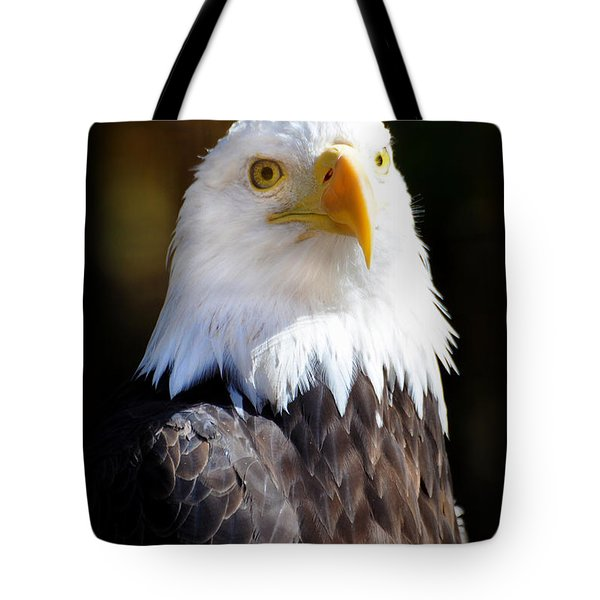 Eagle 14 Tote Bag by Marty Koch