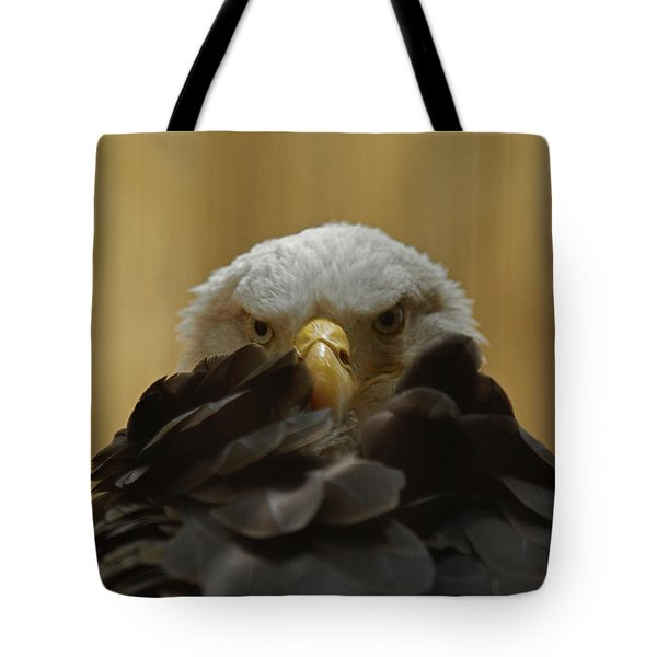 Eagle Thinking Tote Bag by Peter Gray