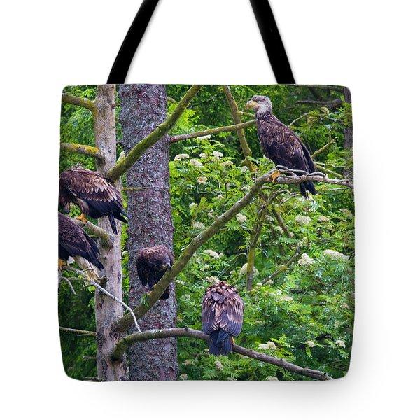 Eagle Tree Tote Bag by Mike  Dawson