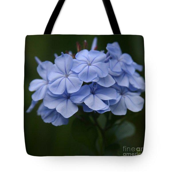 Eia Au La E Ke Aloha Blue Plumbago Tote Bag by Sharon Mau