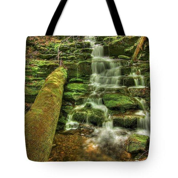 Emerald Dreams Tote Bag by Evelina Kremsdorf