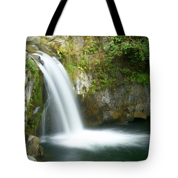 Emerald Falls Tote Bag by Marty Koch