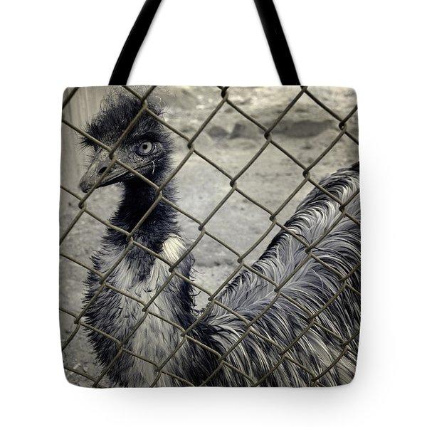 Emu At The Zoo Tote Bag by Luke Moore
