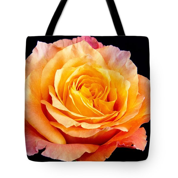 Enticing Beauty The Orange  Rose Tote Bag by Daphne Sampson