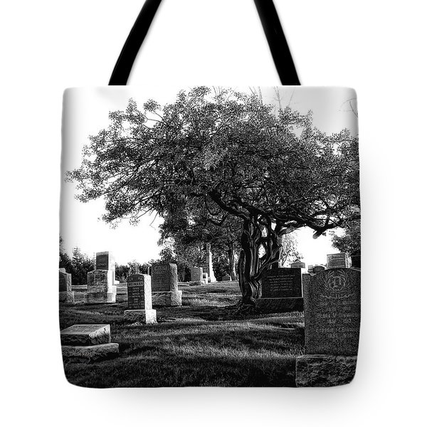 Etched In Stone Tote Bag by Donna Blackhall