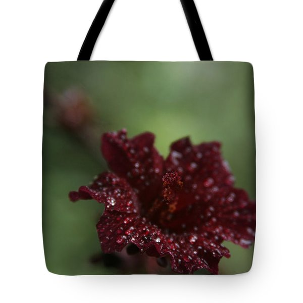Eternal Harmony Tote Bag by Sharon Mau