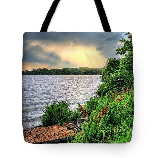 Evening Flight Tote Bag by JC Findley