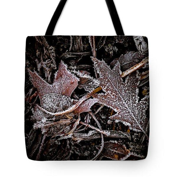Everlasting 1 Tote Bag by Venetta Archer