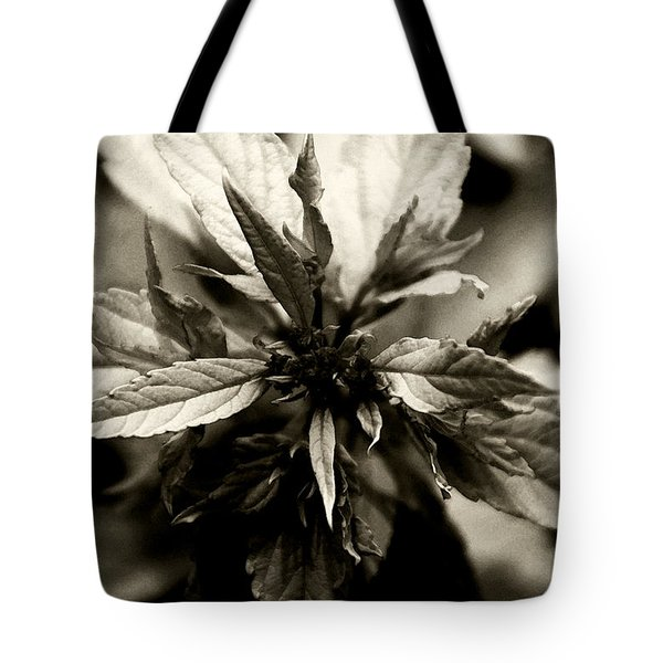 Evermore Tote Bag by Linda Knorr Shafer